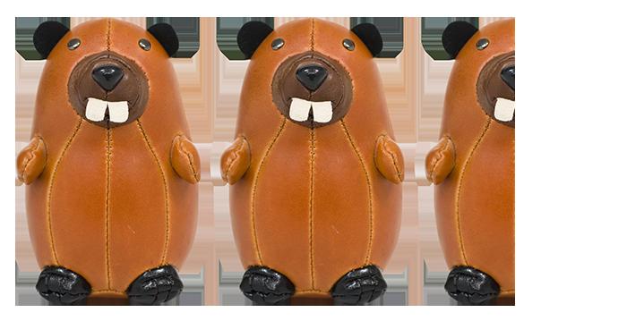 2.5-Beavers